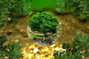 démarche écologique imprimerie